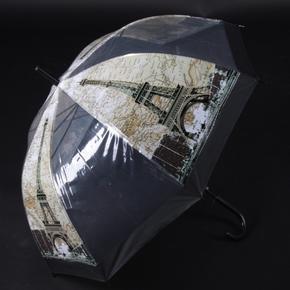 Automatický priehľadný dámsky dáždnik Bessy