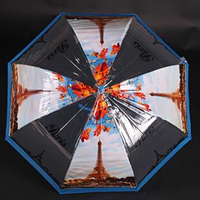 Automatický priehľadný dámsky dáždnik Dean modrý