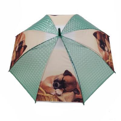 Vystřelovací deštník Puppy zelený - 1